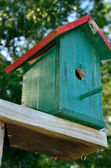 Green and red birdhouse — Stock Photo