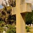 Cross at Bonaventure Cemetery — Photo #12869612