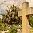 Stockfoto: Cross Memorial at Bonaventure Cemetery