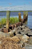Zona de lanzamiento de bote de río torcido — Foto de Stock