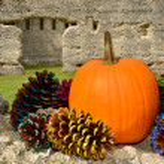 Ledge of fall holiday spirit — Stock Photo #13749638
