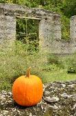 Orange pop citrouille en ruines — Photo
