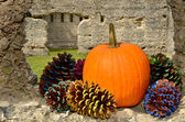 Ledge of fall holiday spirit — Stock Photo