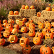 Displayed carved pumpkins — Stock Photo