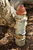 Antique fire hydrant — Stock Photo
