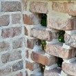 Stock Photo: Brick lattice work