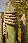 Pointed stockade post wrapped with rope — Stock Photo