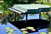 Piano in a pond — Stock Photo