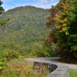 Blue Ridge Parkway Curves — Stock Photo #33502371
