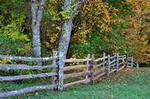 Hand cut rail fence — Stock Photo