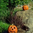 Jack-o-lanterns on the rocks — Stock Photo