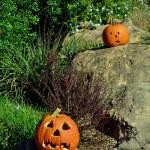 Jack-o-lanterns on the rocks — Stock Photo