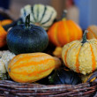 Colorful pumpkins - Lizenzfreies Foto