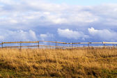 Landscape with fence — Stock Photo