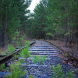 Old railroad — Stock Photo #36239113