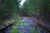 Old railroad — Stock Photo