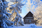 Russian winter — Foto Stock
