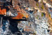 Rock Ledge — Stock Photo