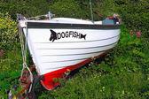 Dogfish Boat Abandoned — Stock Photo