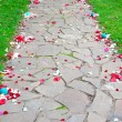 Stock Photo: Petals on walkway