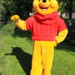 Stock Photo: Animator wearing Winnie Pooh costume