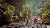 železniční tunel s starých cihel v lese a horských. — Stock fotografie