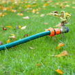Stock Photo: Lawn sprinkler in autumn garden