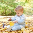 Stock Photo: Baby boy sitting in autumn leaves