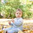 Baby boy sitting in autumn leaves — Stock Photo