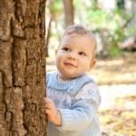 Baby boy standing near tree in autumn park — Stock Photo #13338641