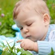 Baby boy touching grass and thinking — Stock Photo