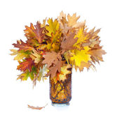 Autumn leaves in a vase isolated on white — Stock Photo