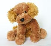Stuffed animal — Stock Photo