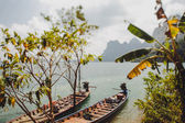 Canoes on the water — Stock Photo