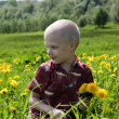 Little boy in flowers field — Stock Photo #21290669