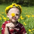 Little boy in flowers field — Stock Photo