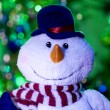 Christmas snowman — Stock Photo #21290969