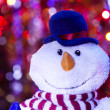 Christmas snowman — Stock Photo #21290987