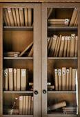 Books on the shelf — Stock Photo
