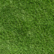 Green grass background — Stock Photo #23871827