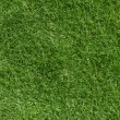 Green grass background — 图库照片 #23871827