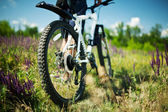 Modern bicycle in meadow with shallow dept of field — Stock Photo