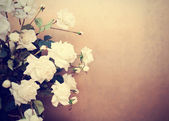 White roses, retro tinted photo — Stock Photo