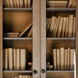 Books on the shelf — Stock Photo