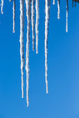 Beautiful icicles glint in the sun against the blue sky — Stock Photo