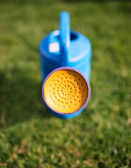 Close up on the spout of a green plastic watering can against so — Stock Photo