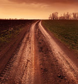 Country road through the fields, tinted photo — Stock Photo