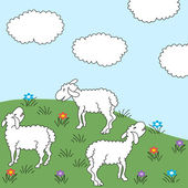 Sheep Meadow — Stock Vector