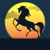 Koń na zachodzie słońca — Wektor stockowy