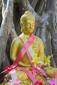 Una estatua dorada de buda — Foto de Stock